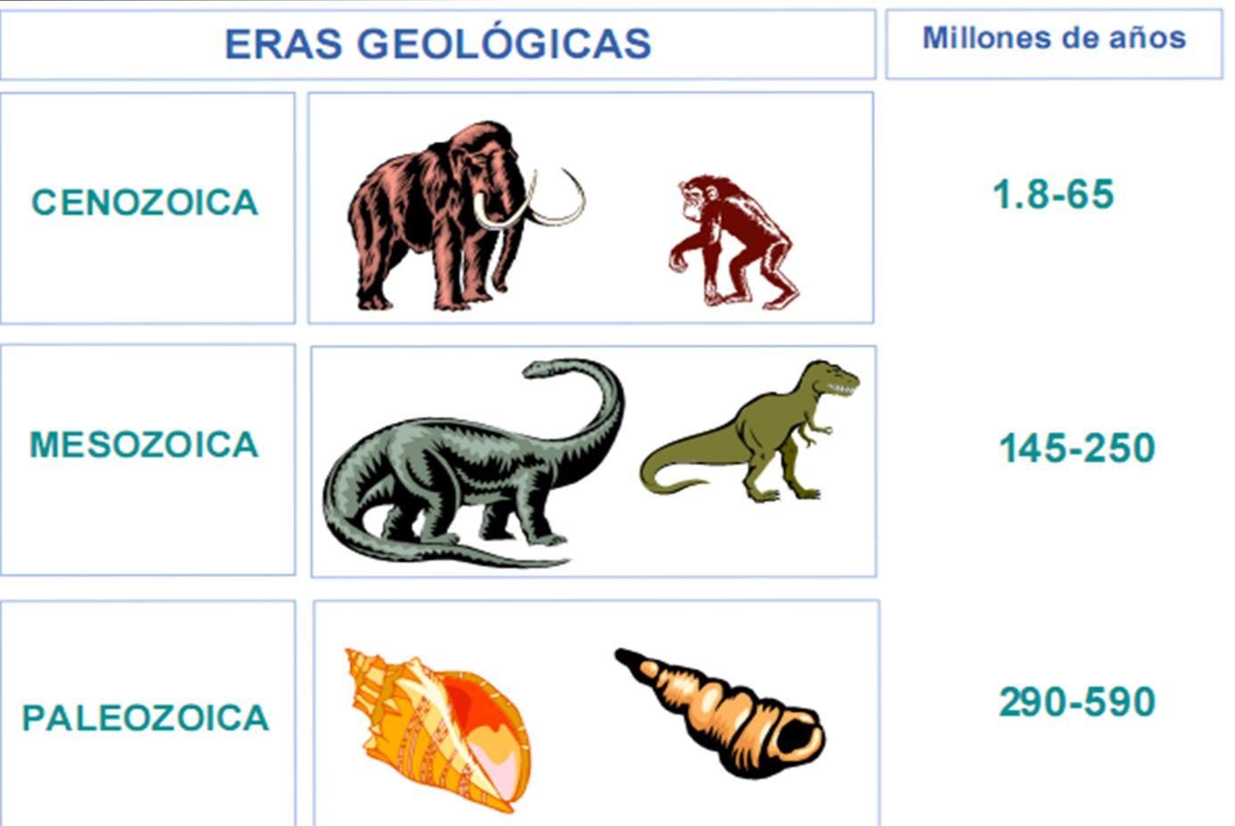 RADIO TIERRA VIVA !: Eras geológicas de la Tierra