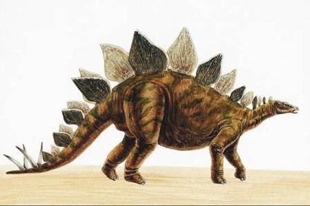 ¿Existió una civilización que coexistió con los dinosaurios? Stegosaurus_550px