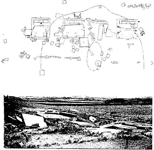 NIBIRU Fig-104