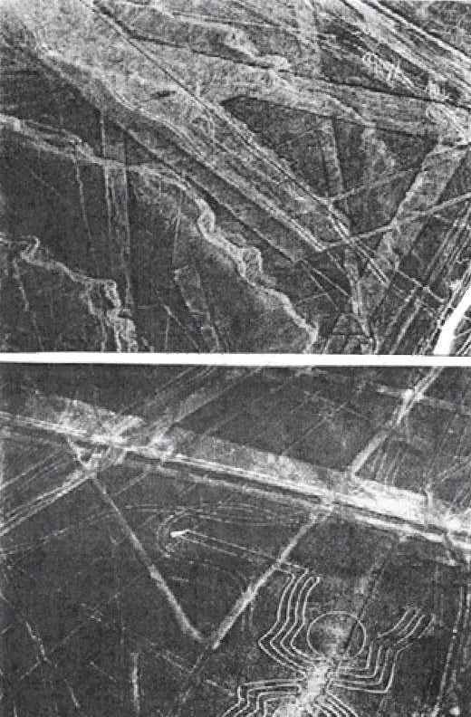 NIBIRU Fig-110