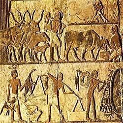 Resultado de imagen de Hicsos pastores