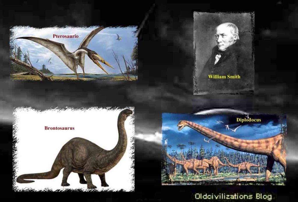 mi querido brontosaurus una expedicin cientfica al encuentro de nuestros dinosaurios favoritos claves z5kcwpv0lsl218pisitbstickerarrowdptopright1218sh30ou30acus218jpg