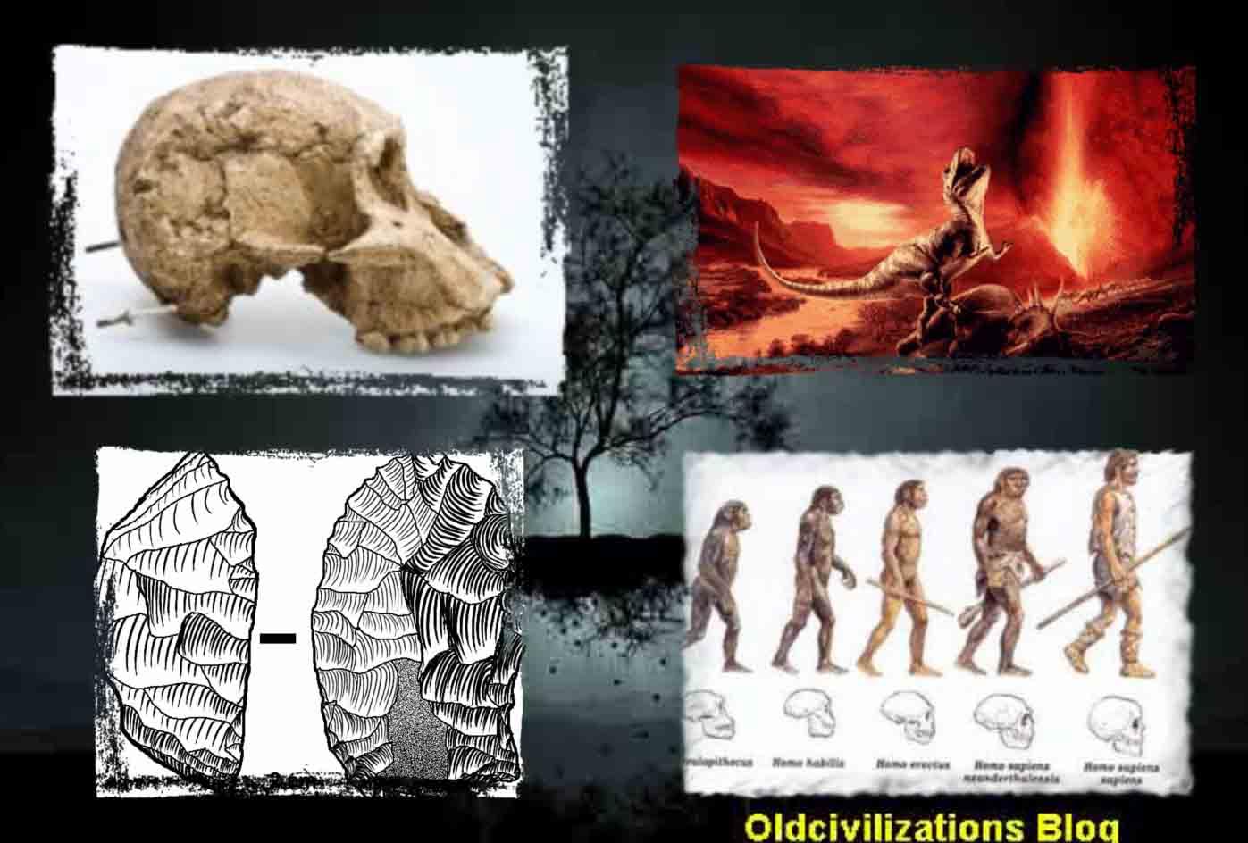 La interpretación del pasado de la vida sobre la Tierra a través de ...